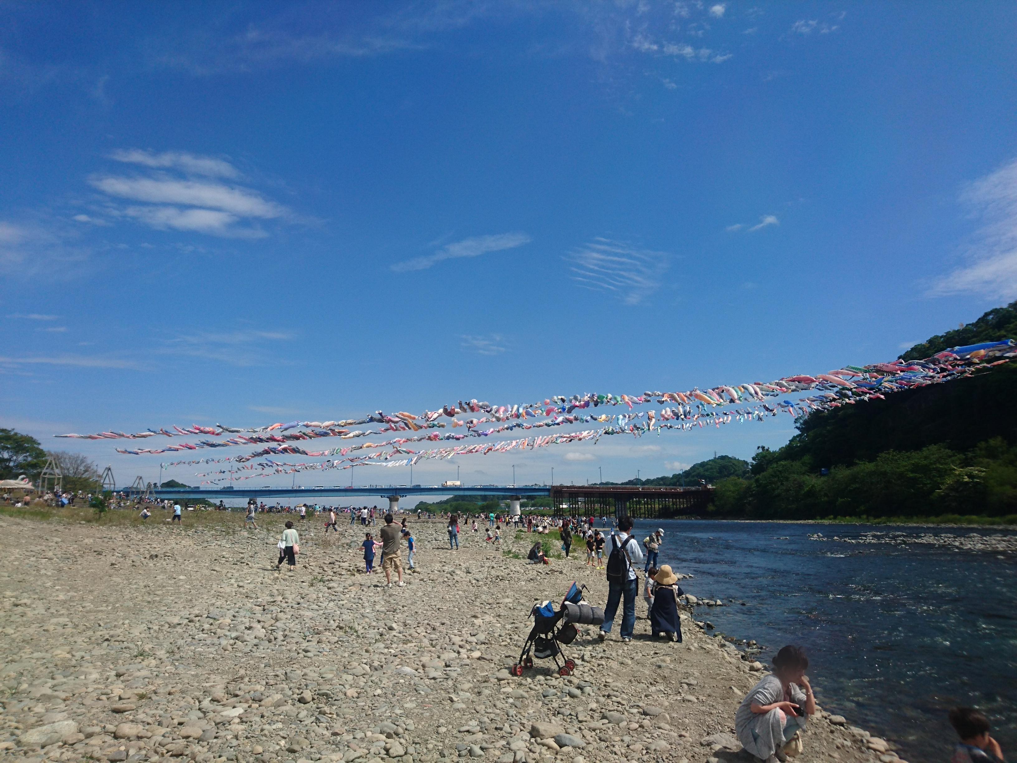 1200匹の鯉のぼりが群泳