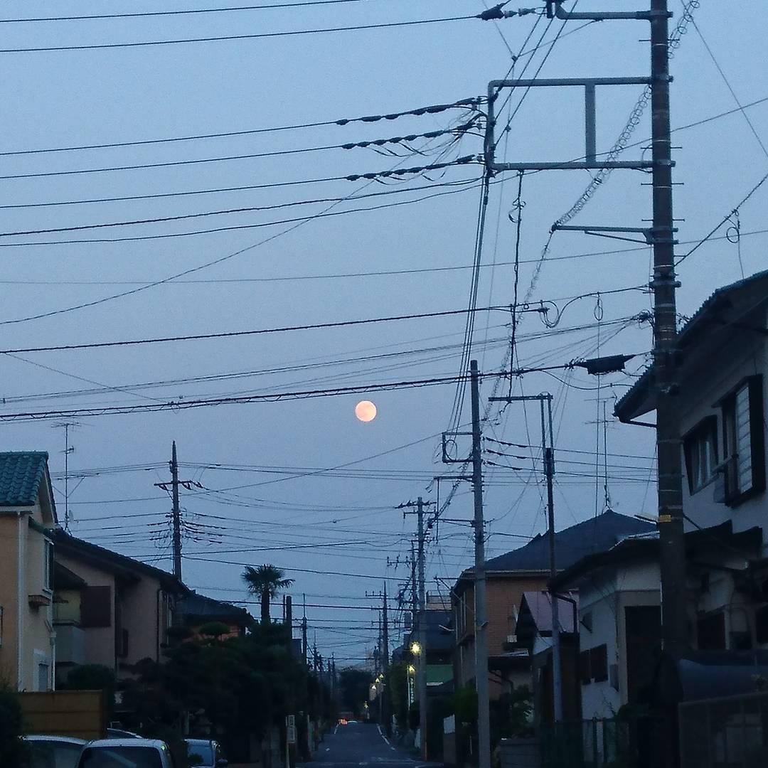 ほぼ満月。それにしても電線の数が凄すぎる!
